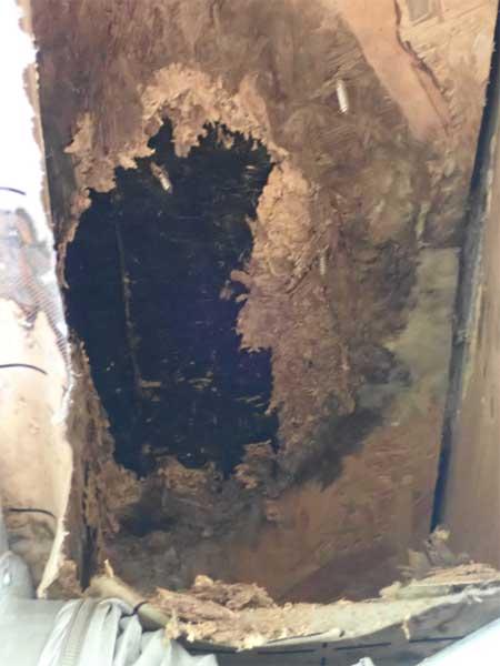 Construction bois problème étanchéité